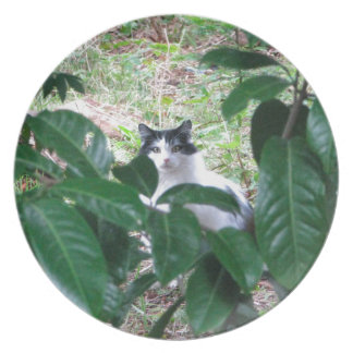 Kitty In The Leaves Plate