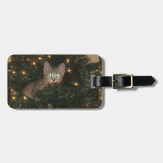 Kitty In Tree Tags For Bags