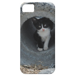 Kitty in Tube iPhone 5 Case