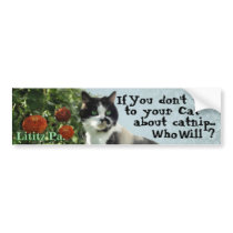 Kitty Inspirations Bumper Sticker