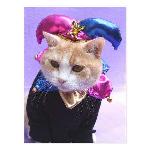 Kitty Jester Postcard