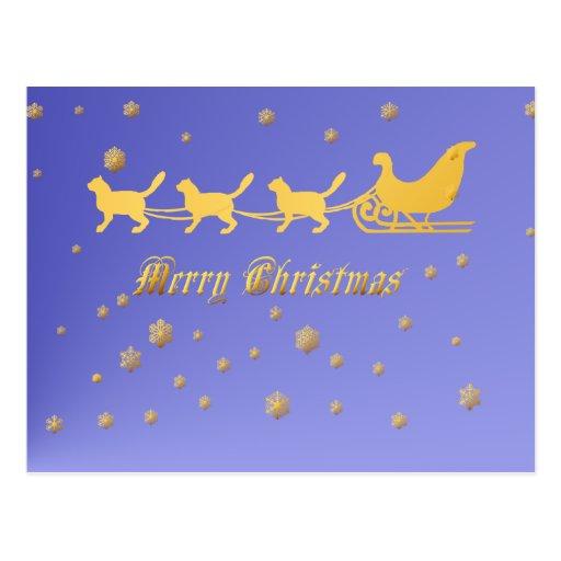 Kitty Kat Christmas Sled Postcard