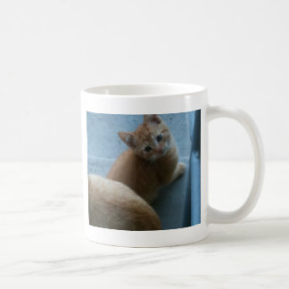Kitty Kat iPhone 4 Case Coffee Mug