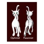 Kitty kitty postcard
