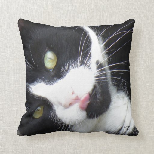 Kitty Lick'in Good Throw Pillows