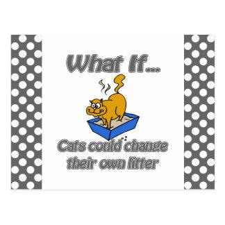 Kitty Litter Postcard