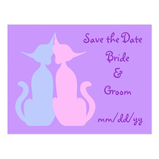 Kitty Love Save the Date Postcard