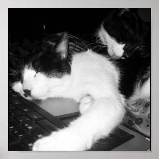 Kitty Lovings... Poster