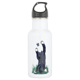 Kitty Makes a Stretching Leap toward Flutter-by Water Bottle