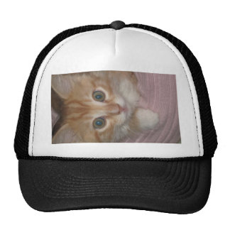 KITTY MEOW COLLECTION MESH HAT