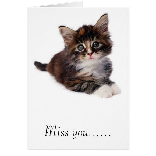 kitty, Miss you...... Card