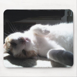 kitty mouse pad! mouse pad