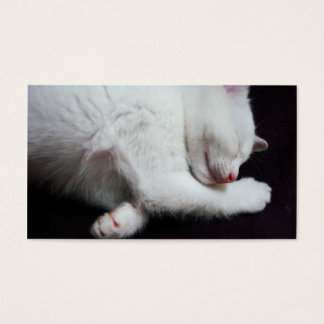 KITTY NAP BUSINESS CARD