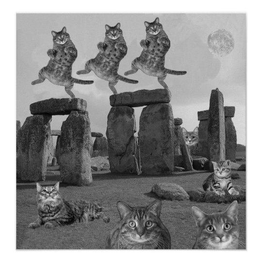 Kitty Night at Stonehenge Poster