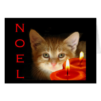 Kitty noel with candles greeting card