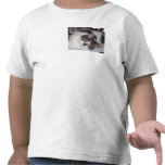 Kitty Paperweight Toddler Shirt