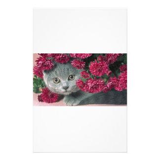 Kitty-Peek-A-Boo Custom Stationery
