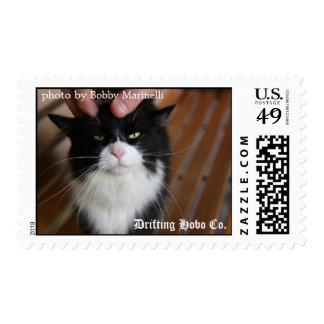 Kitty Postage Stamps