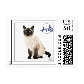 Kitty Postage Stamp