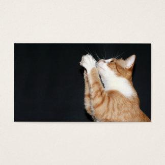 Kitty prayer profile card