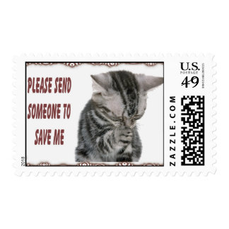 Kitty Rescue Postage
