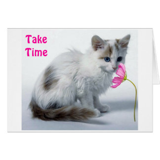 KITTY SAYS TAKE TIME SMELL FLOWER ON BIRTHDAY CARD