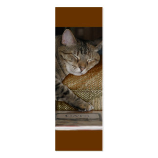 Kitty Sleep Profile Card Double-Sided Mini Business Cards (Pack Of 20)