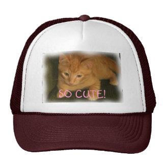 "Kitty ""SO CUTE!"" Hat"