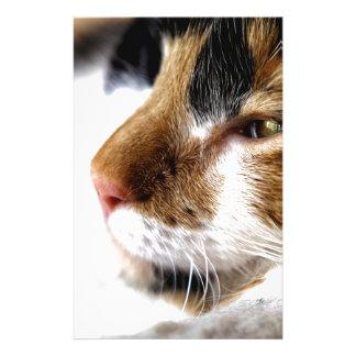 Kitty Stationery