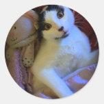 Kitty Sweet Dreams Sticker