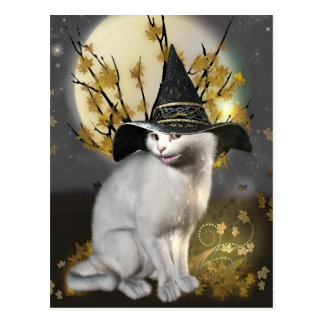 Kitty The Magical Witches Cat Postcard