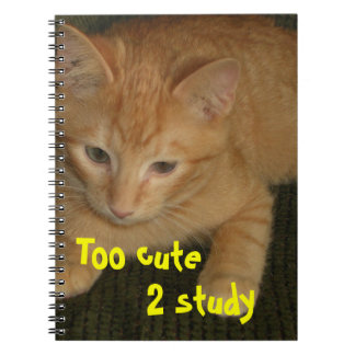 "Kitty ""Too cute 2 study"" Notebook"