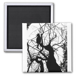KITTY TREE SILHOUETTE B&W 2 INCH SQUARE MAGNET
