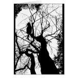 KITTY TREE SILHOUETTE B&W CARDS