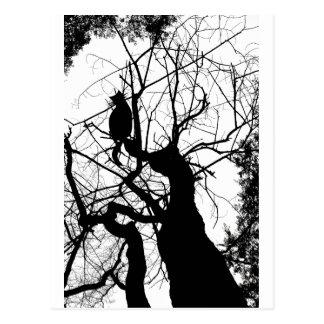 KITTY TREE SILHOUETTE B&W POSTCARD