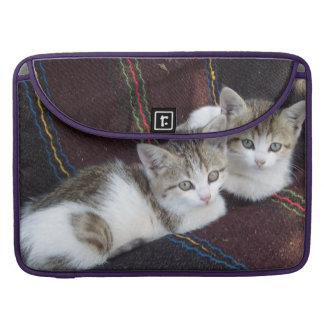 KITTY TWINS MacBook PRO SLEEVES