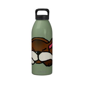 Kitty Water Bottles