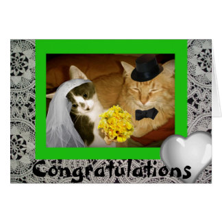 Kitty Wedding Greeting Cards