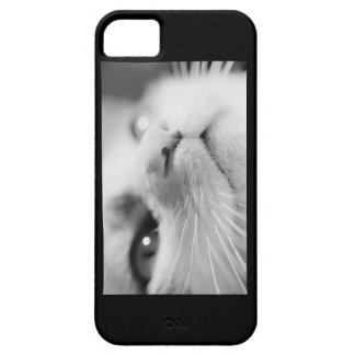 Kitty Wishes iPhone 5 Covers
