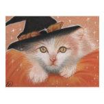 Kitty Witch Postcard