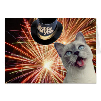 Kitty with fireworks card