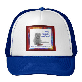 Kitty with Mouse Cap Mesh Hat