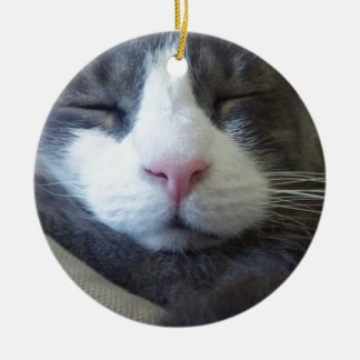 Kitty with pink nose sleeping ceramic ornament