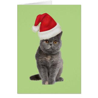 kitty xmas card