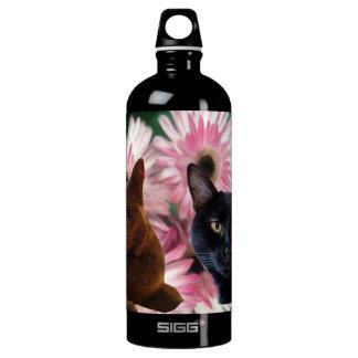 Kittys en una botella