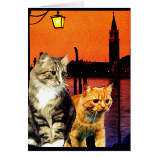 """Kittys in Venice"" Card"