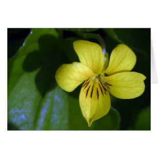 KIW Sparks: Fl Yellow Violet Card