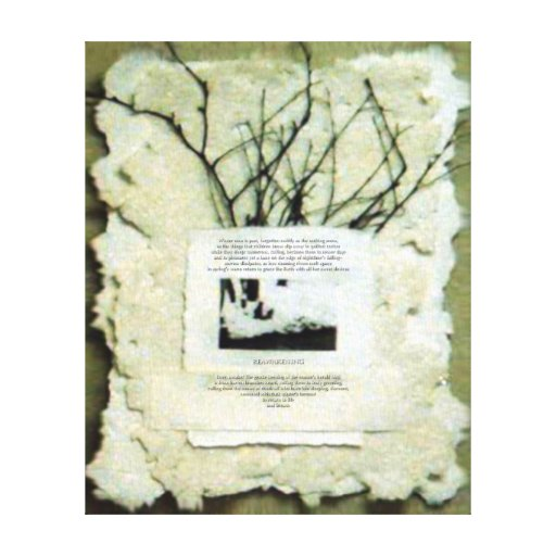 KIW Sparks: Reawakening Stretched Canvas Prints
