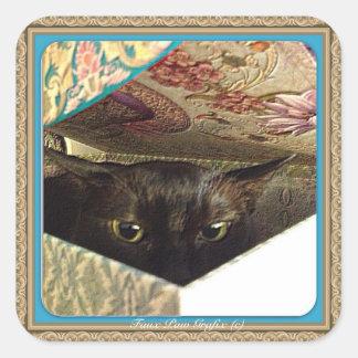 Kiwi en una caja, serie 1, actitud del atisbador, pegatina cuadrada