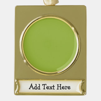 Kiwi Gold Plated Banner Ornament
